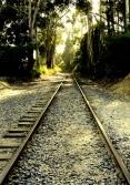 tracking_trains