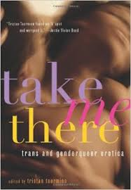 TAKE ME THERE-- Trans erotica. Click to buy.