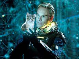 Look, it's Michael Fassbinder with a kitten! (Warning, this cute image is not in the drecky movie.)